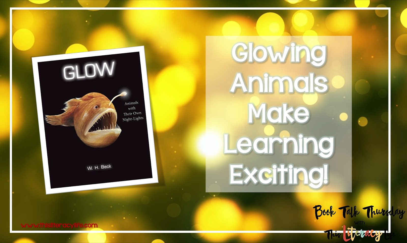 Students will be amazed as they read about animals that glow in the book Glow. And using it in your classroom can be simple and engaging.