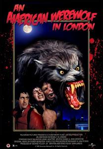 Người Sói Mỹ Ở London