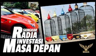 Sangkar Love Bird RADJA Ferrari