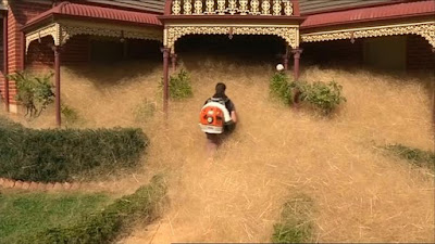 Tumpukan Tumbleweed Telah Menelan Rumah di Australia