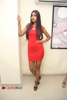 Actress Model Honey Pictures at Anoos Franchise Salon and Clinic Launch 0080