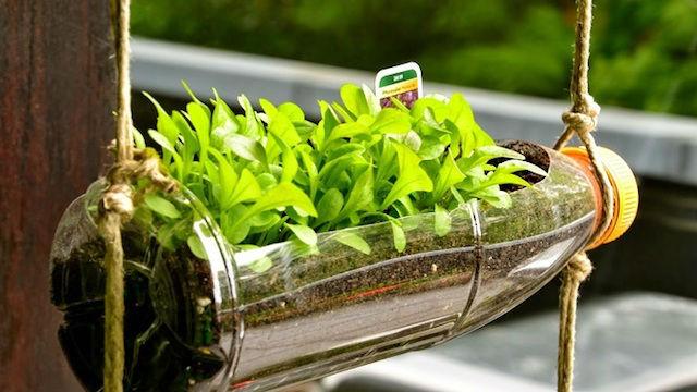 jardinera vertical con botella de plástico reciclada