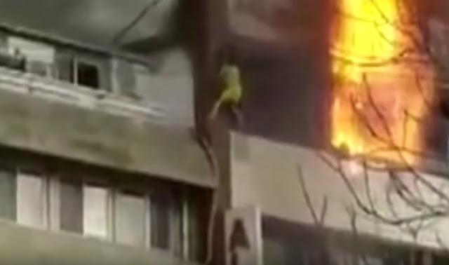 Γυναίκες πηδάνε από φλεγόμενο ξενοδοχείο (βίντεο)