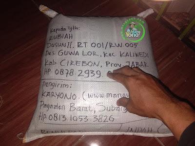 Benih Padi TRISAKTI Pesanan    RUBIAH Cirebon, Jabar  (Sesudah di Packing)