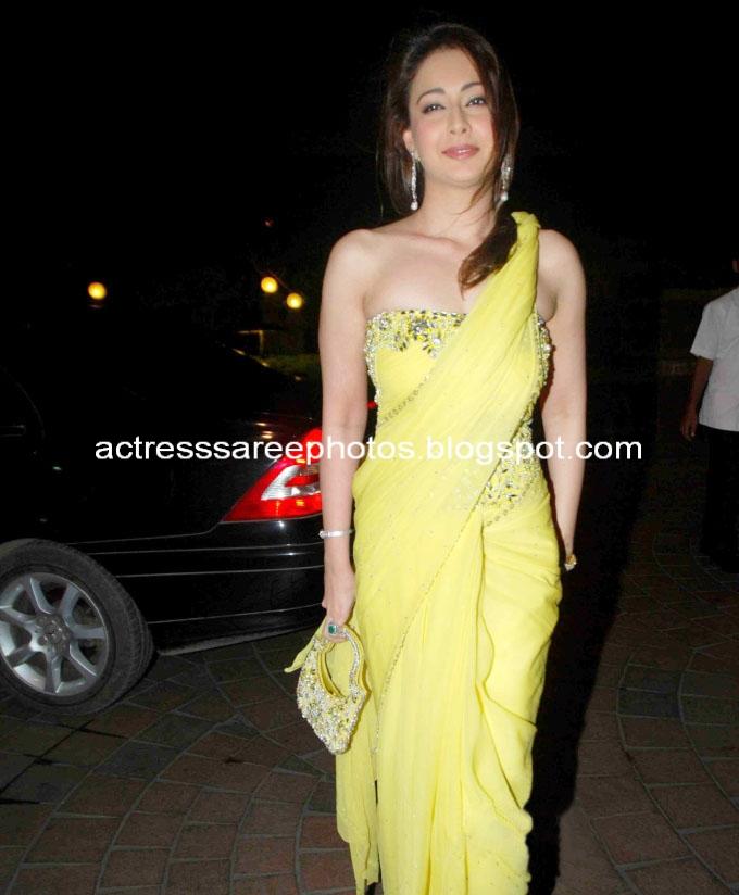Actress Preeti Jhangiani Hot Saree Photos