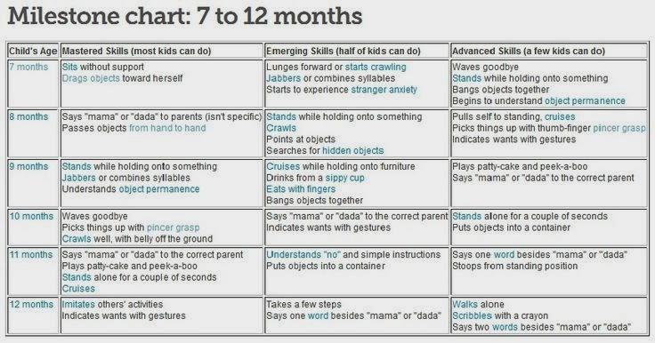 Baby Milestone Chart 7 12 Months