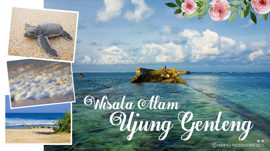 Wisata Alam Ujung Genteng Sukabumi Roosvansia