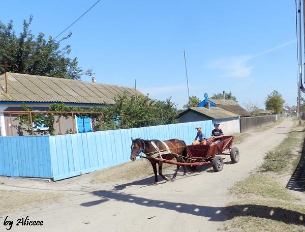 satul-letea-case-albastre-delta