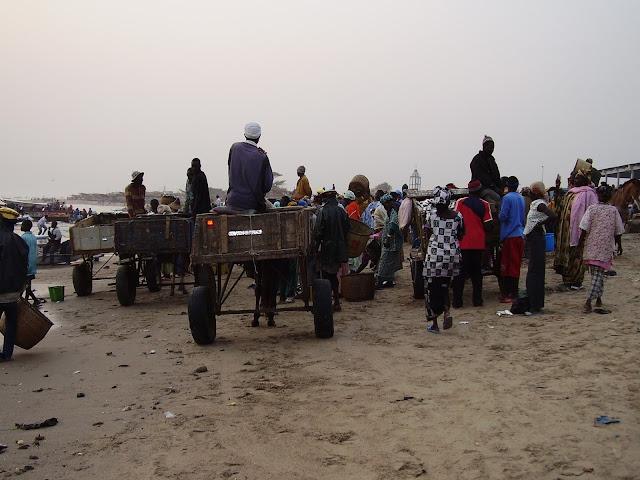 P1210031 ▷ Llegada de Pescadores al Puerto de Mbour