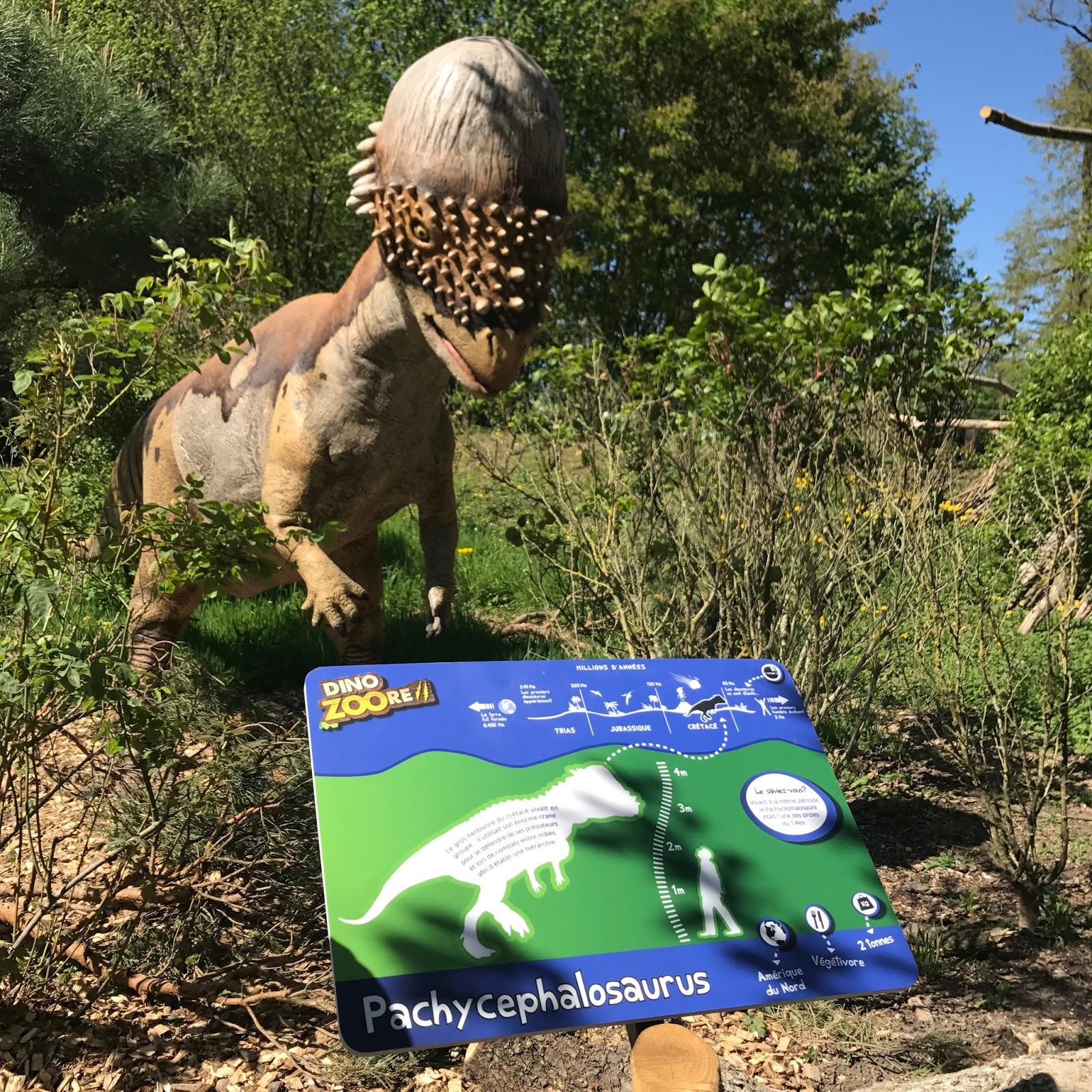 Le petit dinosaure petit pied et son nouvel ami - Petit pieds dinosaure ...