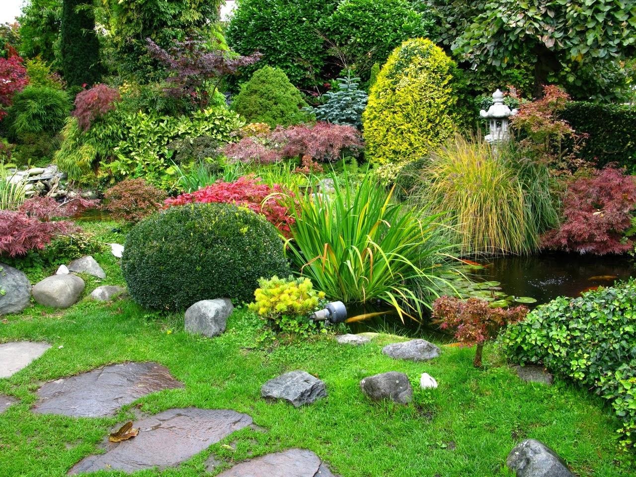 Fondos para fotos jardin interior - Fotos de jardines ...