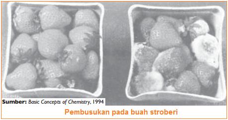 gambar perubahan kimia pada permbusukan