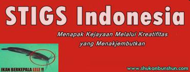 apa itu kepanjangan dari singkatan STIGS Indonesia