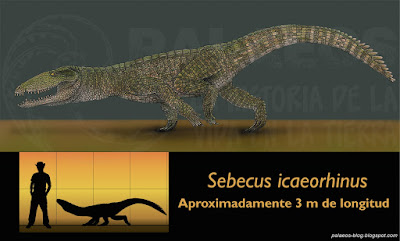 paleocene crocodylians