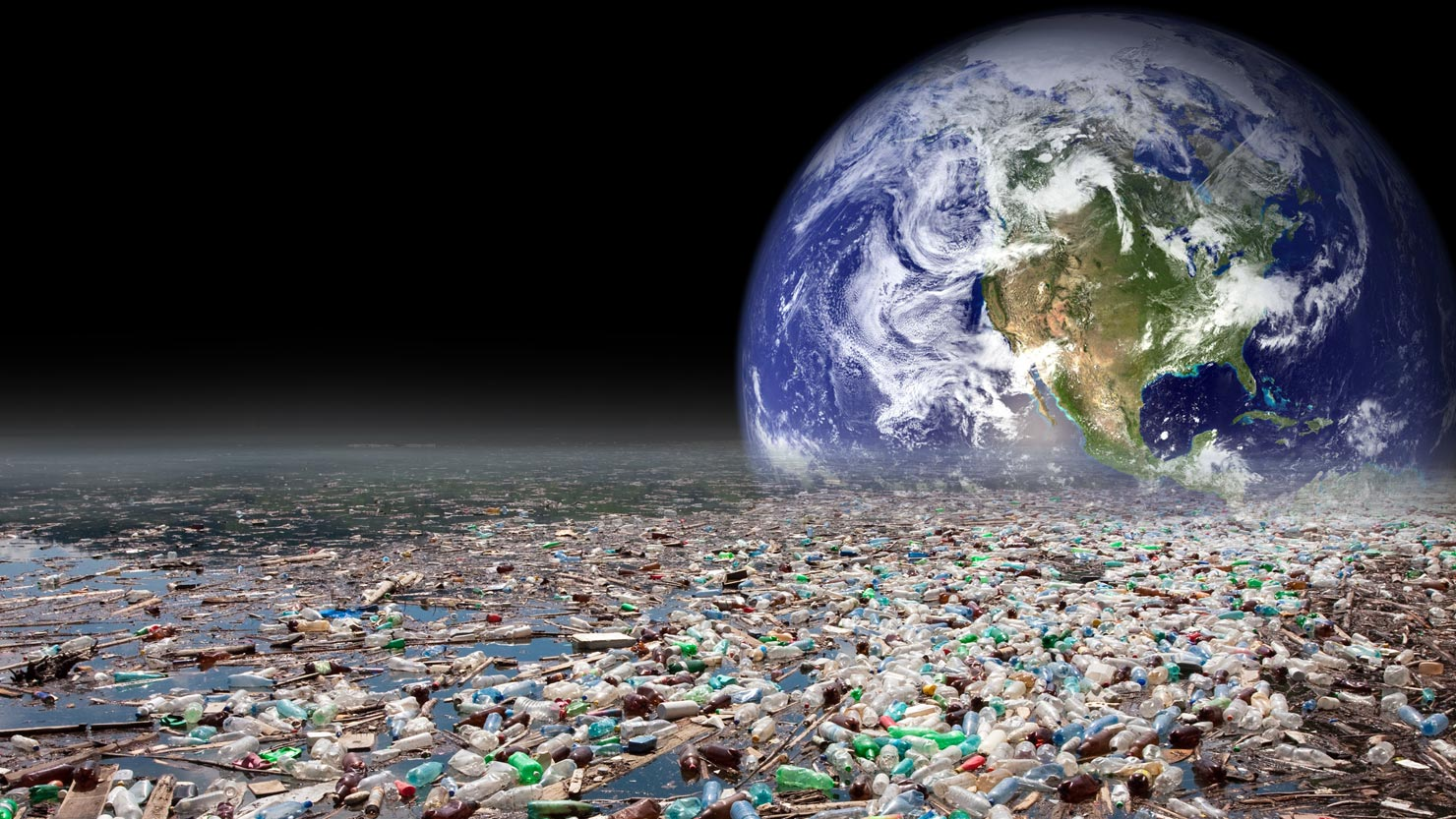 HUMAN: Harmful effects of ENVIRONMENTAL POLLUTION.