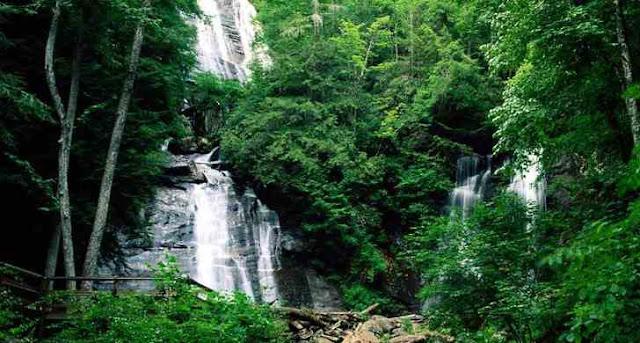Pemandangan Indah Hutan Pulau Kalimantan