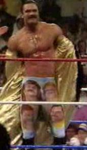 WWF / WWE SURVIVOR SERIES 1989 - Ravishing Rick Rude