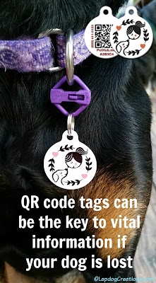Dog Wearing QR code tag