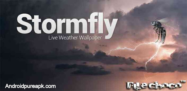 Stormfly apk Download