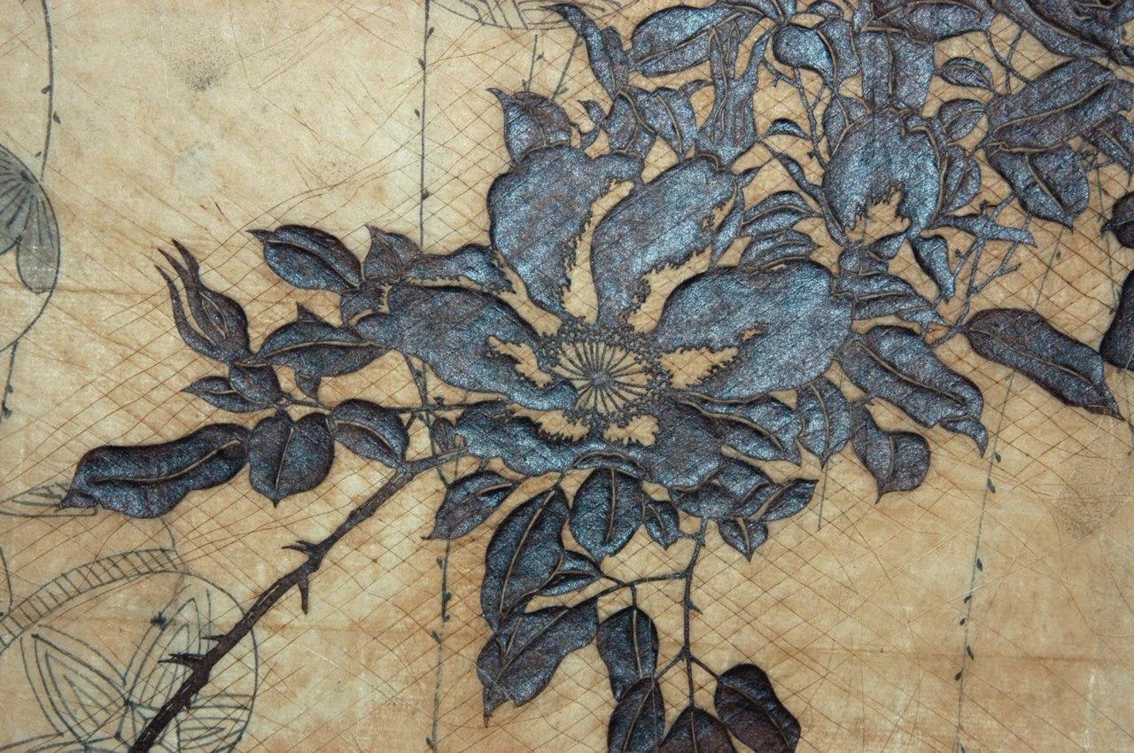 pokemon sonne shiny katagami