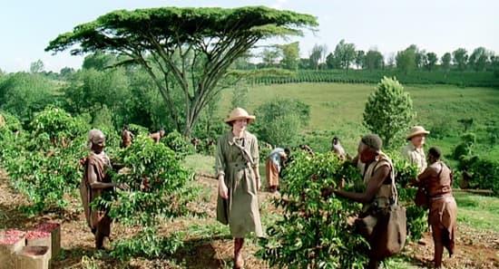 Meryl Streep- La mia Africa 1985-piantagione