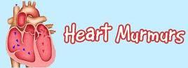 COCHIN CARDIAC CLUB: HEART MURMURS
