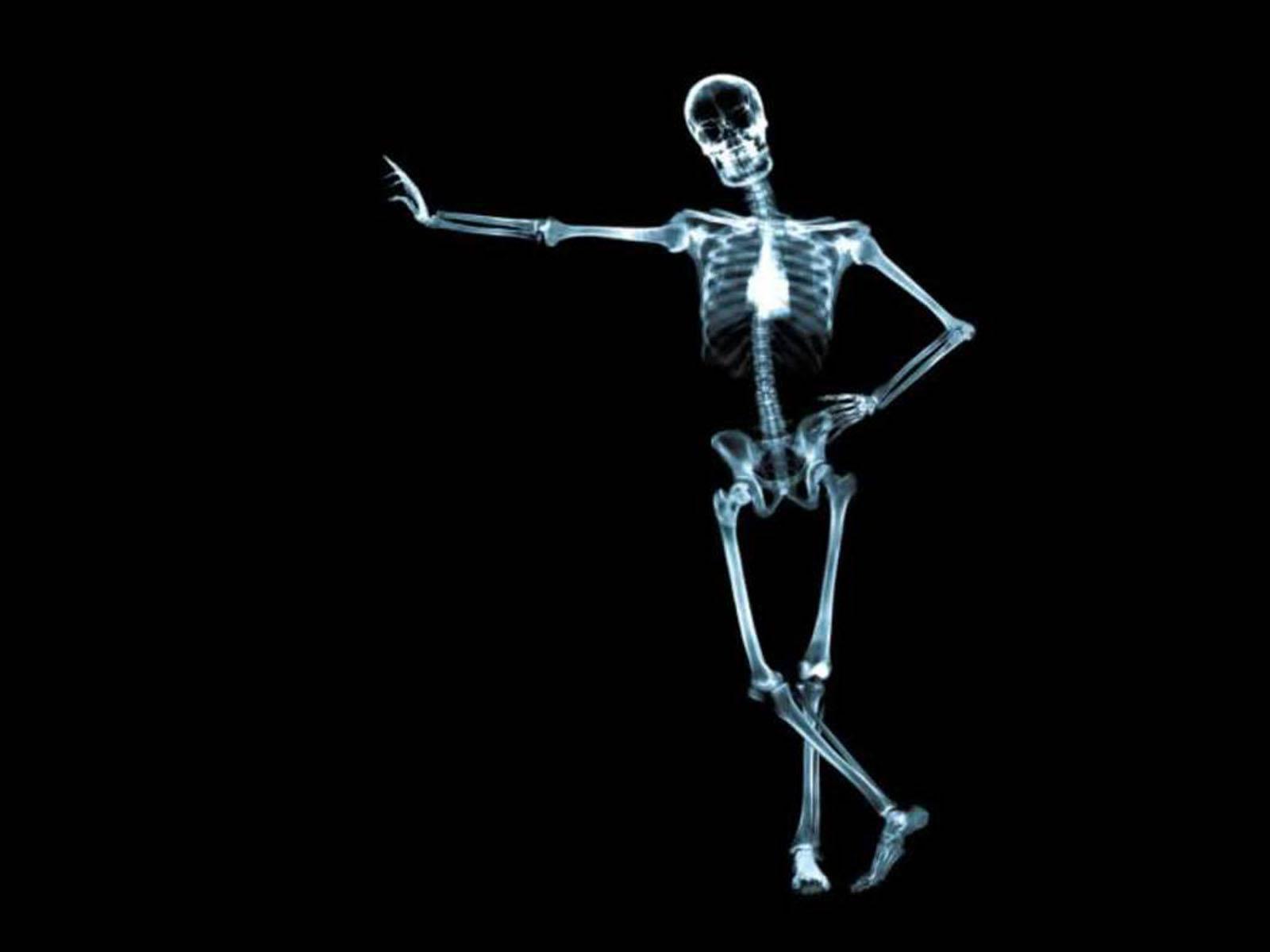 Wallpapers skeleton wallpapers - Skeleton wallpaper ...