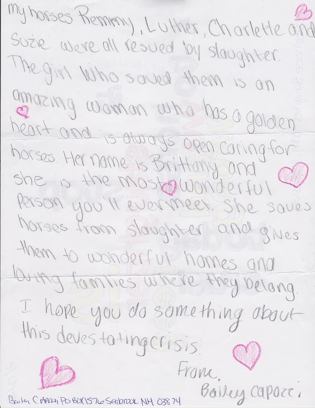 Children 4 Horses: Letter Examples From Two Sisters :-)