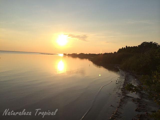 Fotos de una pequeña playa de Cuba