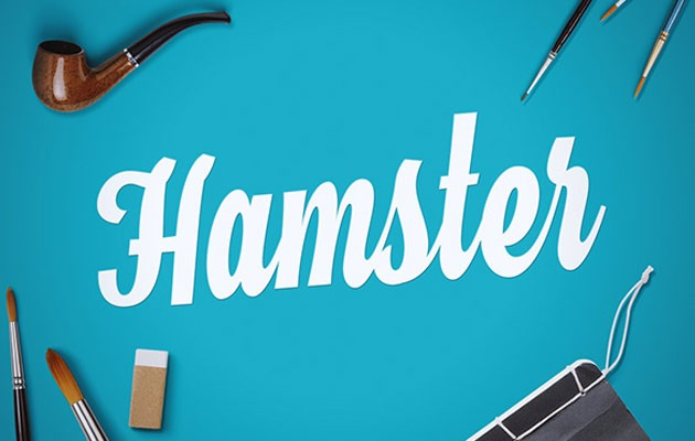20 Script Font Terbaik 2016 - Hamster Script Free Font