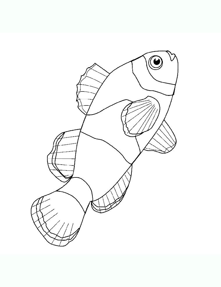 Tranh tô màu con cá 1