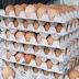 Tips Memulai Usaha Agen Telur Ayam Negeri