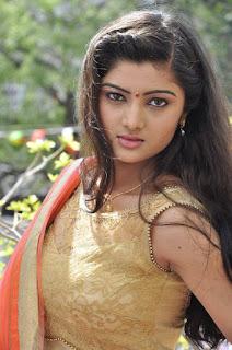 Actress Pallavi Naidu Stills in Half Saree at Lord Shiva Creations New Movie Launch 0001.jpg