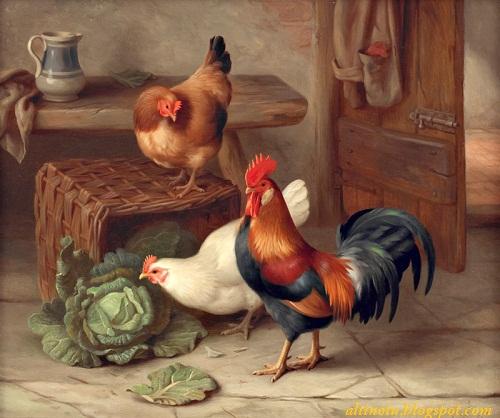 Çiftlik tavukları tablosu
