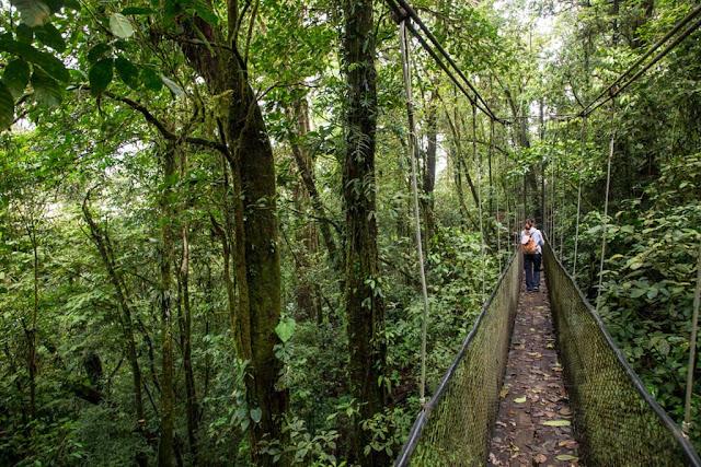 Pasarelas en el hotel Heliconias lodge de Bijagua, Costa Rica