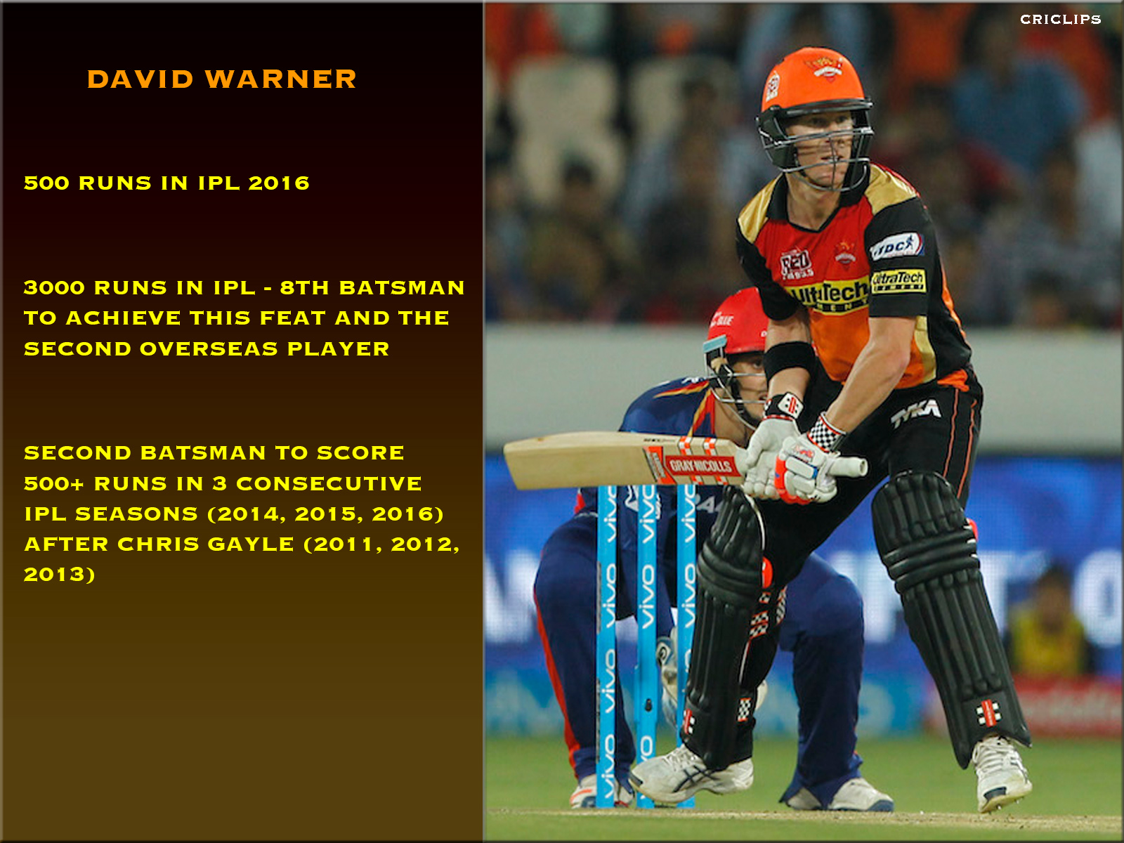 David warner 500 runs in IPL 2016
