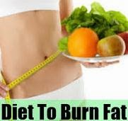 Burn Fat Diet