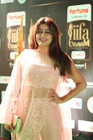 Nidhi Subbaiah Glamorous Pics in Transparent Peachy Gown at IIFA Utsavam Awards 2017  HD Exclusive Pics 29.JPG