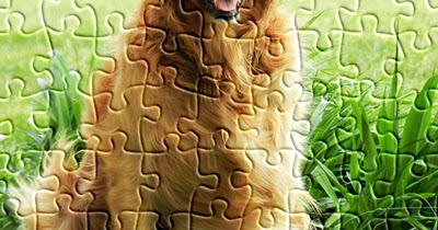 js puzzles