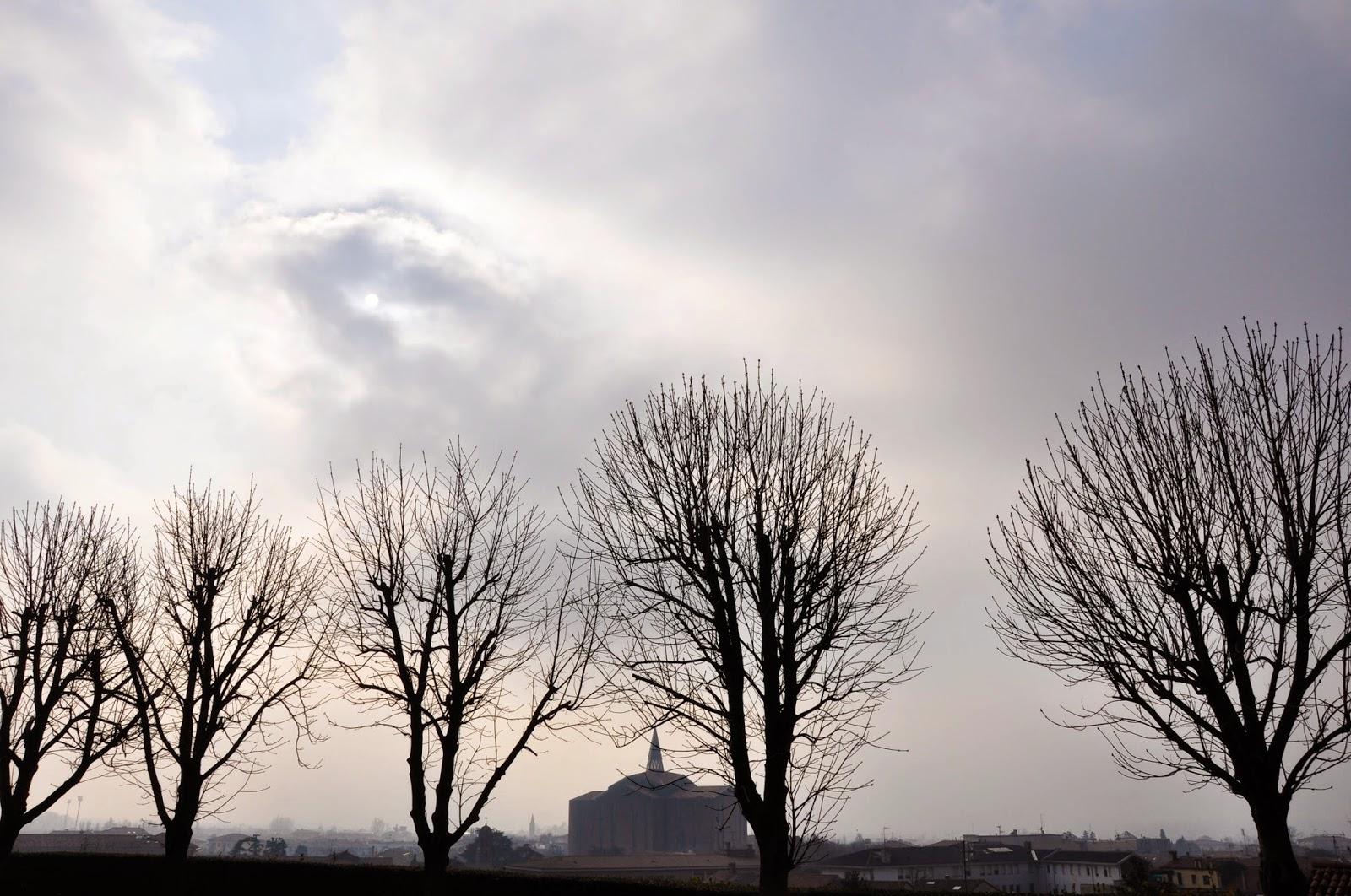 trees haze Monselice Italy
