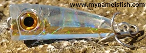 Bassday Crystal Popper 30 Plastic Lure