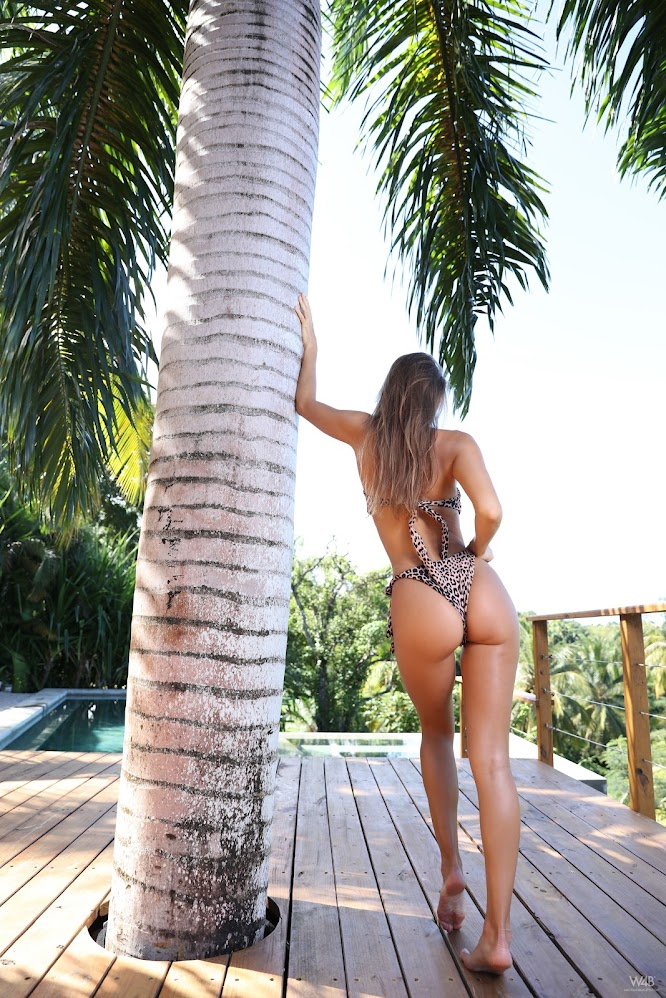 title2:Watch4Beauty Maria Big Palm Tree