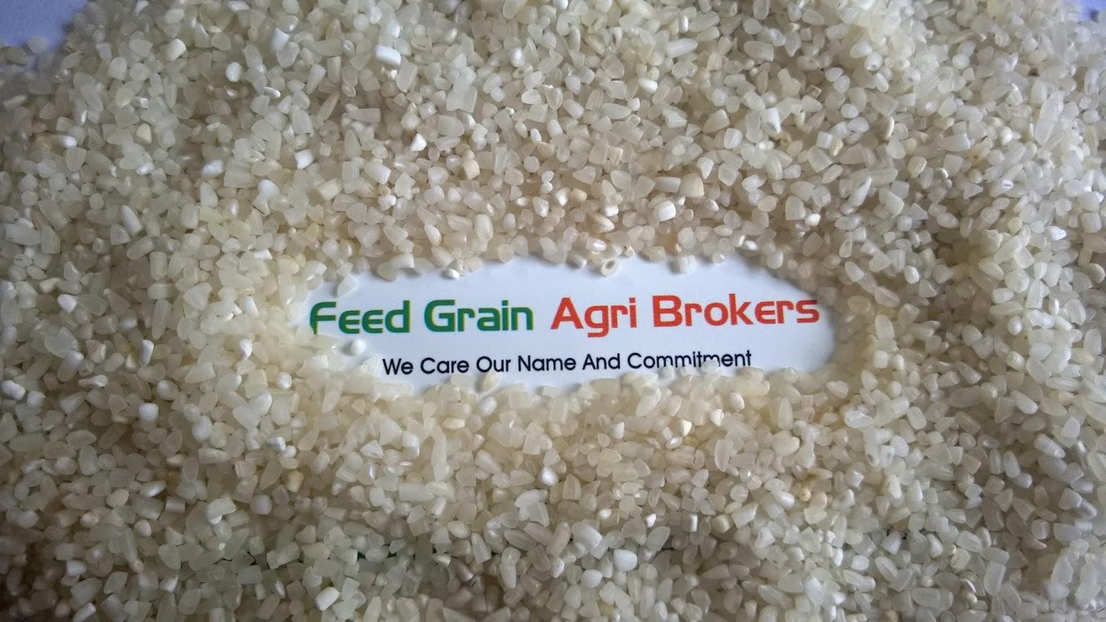 Pankaj Katba Feed Grain Agri Brokers Community AgroChart