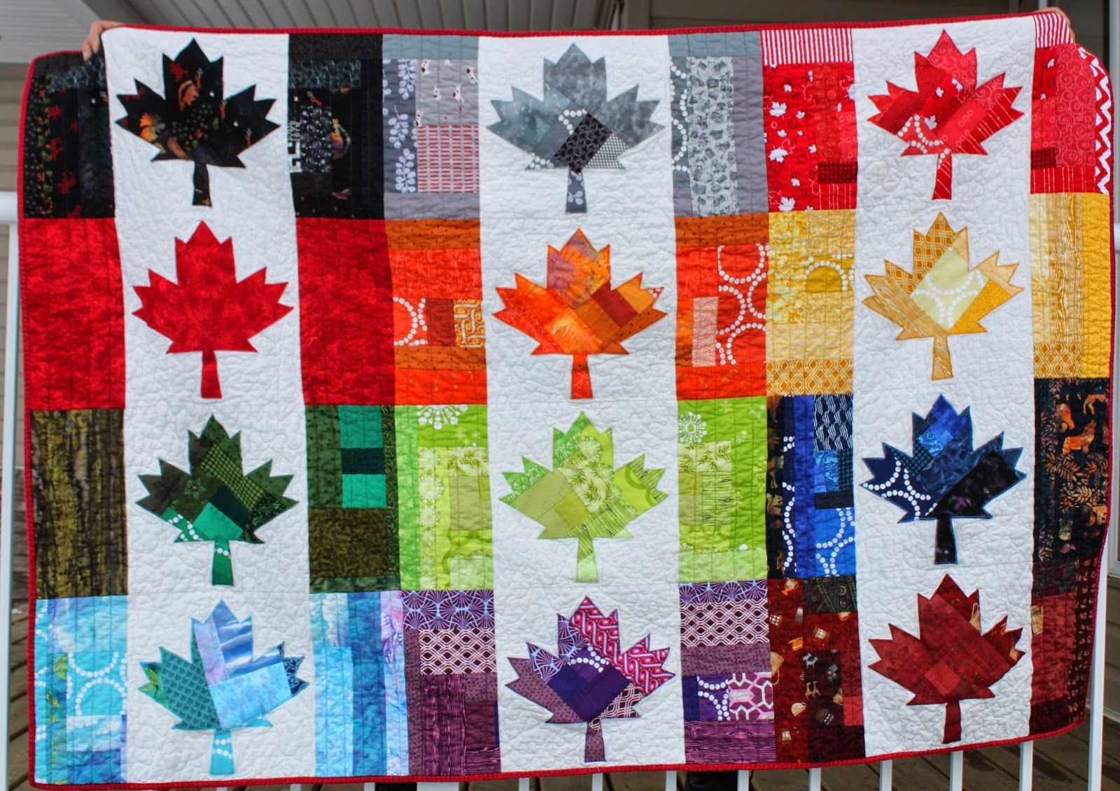 Sew vivor   Season 20 Quilter's Edition   Audition Entry ...