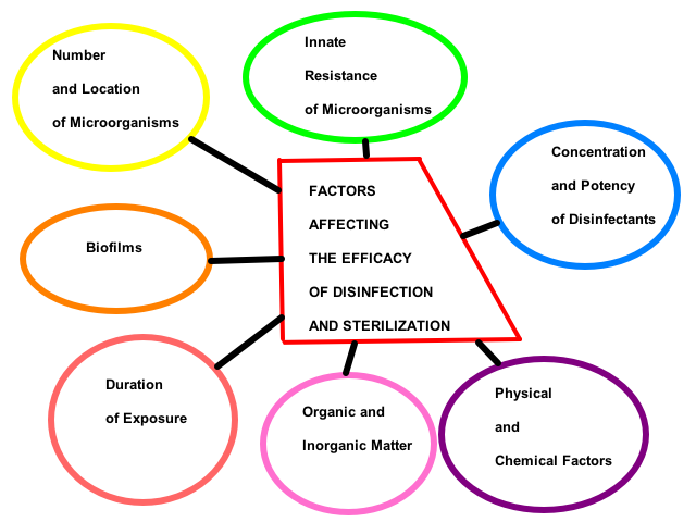 Factors affecting the disinfection and sterilization