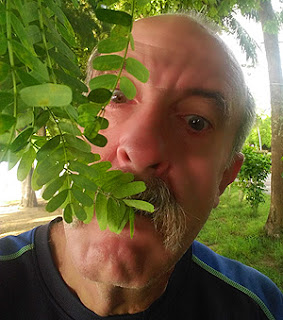 Tamarind leaves are edible