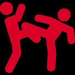 HISTÓRIA, EVOLUÇÃO E REGRAS DO MMA E DO UFC