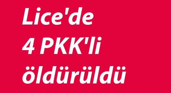 Diyarbakır Lice'de 4 PKK'li öldürüldü
