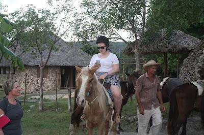 horse varadero cuba