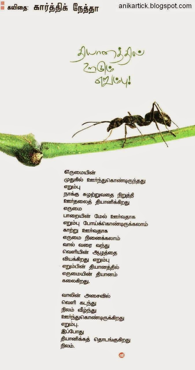 கவிதைகள் - இணையத்தில் ரசித்தவை IMAG0167